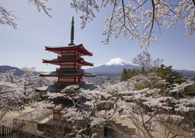 Luxury Japan Travel - Cherry Blossom Tours