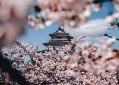Luxury Japan Travel - Luxury Japan Tours (106) (Small)