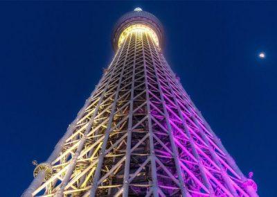 Luxury Japan Travel - Luxury Japan Tours (43) (Small)
