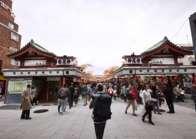 Luxury Japan Travel - Luxury Japan Tours (59) (Small)