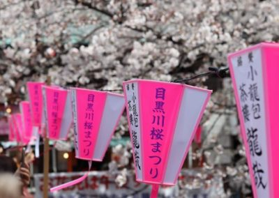 Luxury Japan Travel - Luxury Japan Tours (88) (Small)